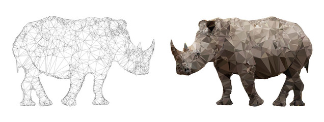 Rhino triangulation vector