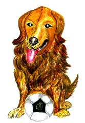 Football Dog Art