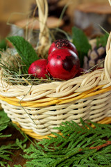 Red coloured quail eggs in a wicker basket. Easter symbol