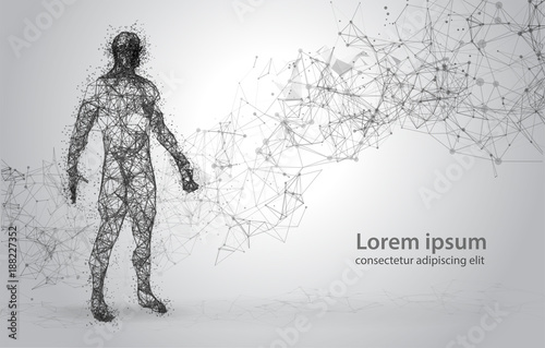 Abstract Wire frame human body. Polygonal 3d model on white ...