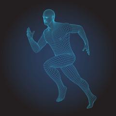 3D wire frame human body. Sprinter Running figure