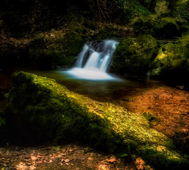 Color outdoor long exposure of a small stream / creek in a forest with rocks, stones,moss,foliage in surreal vintage fantasy style