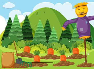 Scene with carrot garden and scarecrow