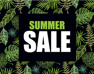 Summer sale banner with hand drawn palm tree leaves