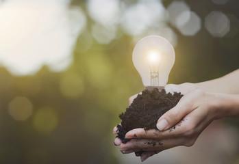 hand holding soil and light bulb. concept green energy.