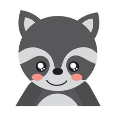 cute portrait raccoon animal baby vector illustration