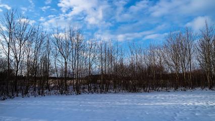 Winterlandschaft mit Bäumen blätterlos