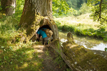 Geocaching, a man looking for a hide in a wooden cavity