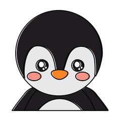 cute portrait penguin animal baby vector illustration