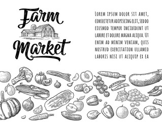 Farm market calligraphic lettering