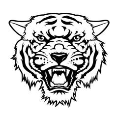 Tiger 008