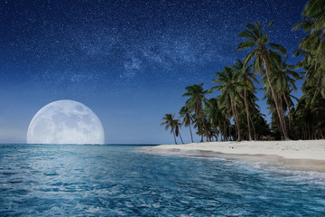 Paradise beach at night. Tropical paradise, white sand, beach, palm trees and clear water Fototapete