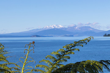 Foto auf Acrylglas Neuseeland Lake Taupo view, New Zealand