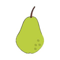 Pear fruit symbol icon vector illustration graphic design