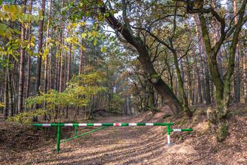 Barrier in Kampinos Forest park in Masovia region of Poland