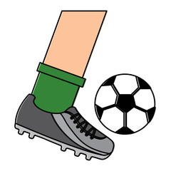leg kicking a soccer ball vector illustration