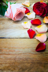 Pink and red roses with petals on the old wood, copy space.