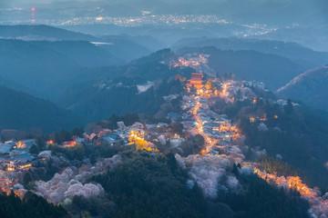 Yoshinoyama sakura cherry blossom with light up. Mount Yoshino  in Nara Prefecture, Japan's most famous cherry blossom viewing spot