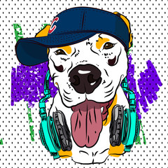 Cool print for T-shirt. Bulldog in the form of rapper. Vector.