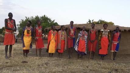 Wall Mural - wide view of a group of ten maasai women and men singing from enkereri village near maasai mara game reserve in kenya