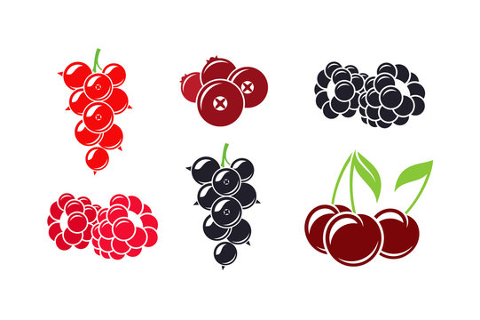 Fresh berries. Isolated raspberry currant cherry cranberry and blackberry on white background