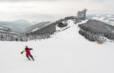 Panorama of Dolni Morava, Kralicky Sneznik, Czech Republic, carving skier and wooden Sky Walk