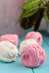 Homemade zephyr or marshmallow on blue background