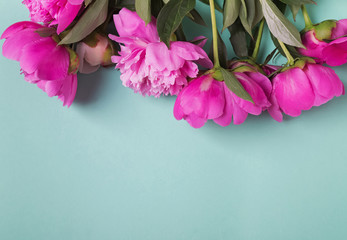 Beautiful peonies on the mint color background