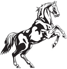 Horse Reared black and white animal vector drawing for tattoo, sign or logo