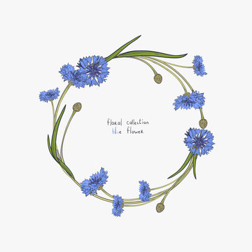 Floral wreath with stylized blue flowers of cornflowers and green leaves