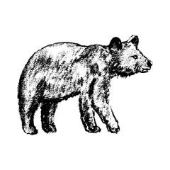 bear icon grunge style