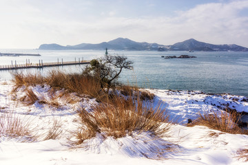 Jangja island dock in winter