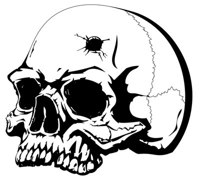 Human skull with a bullet hole on the forehead.