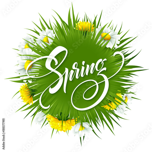Inscription hello spring on background with spring flowers vector inscription hello spring on background with spring flowers vector illustration mightylinksfo