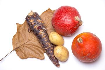 Autumn picture - harvest (pumpkins, potatoes, carrot)