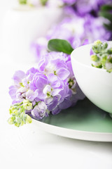 Wall Mural - Beautiful spring flower on the white table