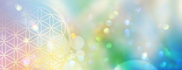 Banner Blume des Lebens in einem Lichtermeer aus Regenbogenfarben