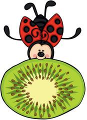 Little ladybug flying with fresh kiwi slice