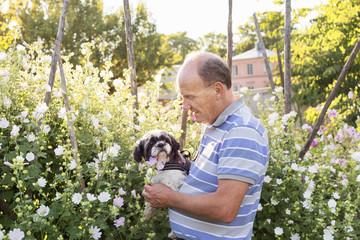Mature man walking in garden and carrying pet dog