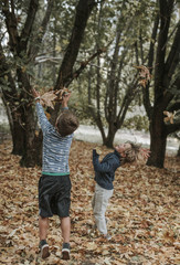 Playful brothers playing with leaves at Yosemite National Park during autumn