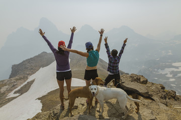 Rear view of friends with arms raised standing by dogs on mountain