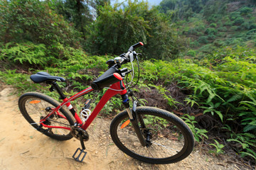 closeup of red muntain bike on forest trial