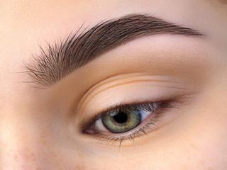 Close up view of beautiful green female eye