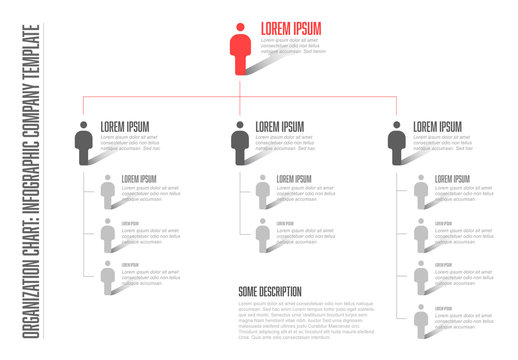 Organizational Chart Infographic Layout 2