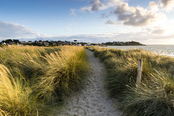Sandy path in grass at sunset in Brittany, Sillon de Talbert, France