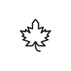 Maple Leaf Line Icon