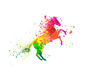 Stylized horse with colorful splashes. Vector illustration.