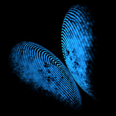 Holographic fingerprint butterfly shape. Holographic digital print on reflective black background, forming an image in the shape of a butterfly.