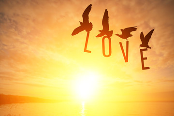 Wall Mural - Silhouette Seagull bird holding LOVE text on Sunset background in Valentine's Day Concept