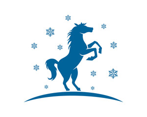 blue winter horses stallion mustang mare ranch image